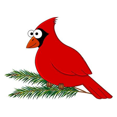 Funny cartoon cardinal bird. Vector bird illustration. Cartoon bird. Isolated on white background.