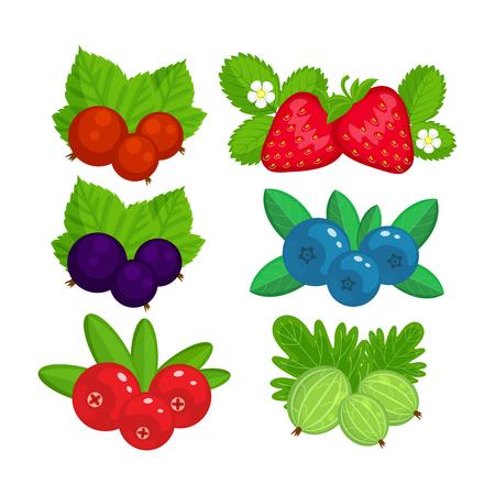 Satz Gartenbeerenillustration lokalisiert auf weißem Hintergrund. Erdbeere, Preiselbeere, Stachelbeere, schwarze Johannisbeere, rote Johannisbeere.