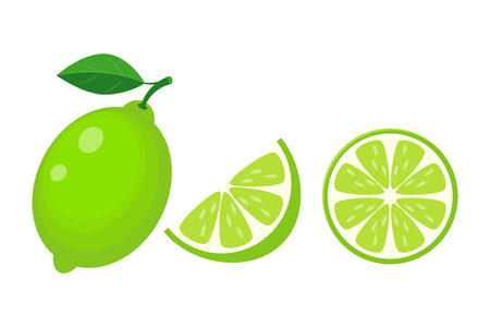 Colorful whole, half and slice lime with green leaf. Vector illustration isolated onwhite background. Ilustração