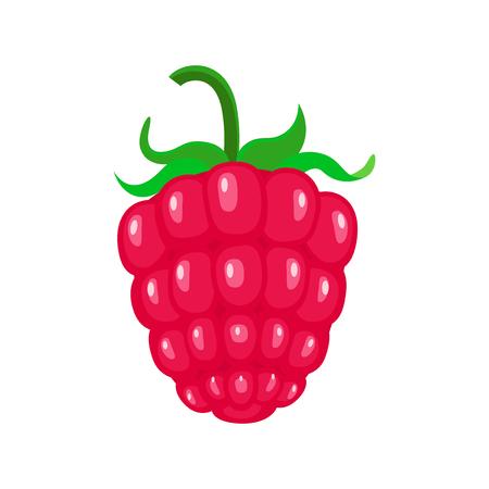 Cartoon rasbpery vector illustration isolated on white background. Garden berries