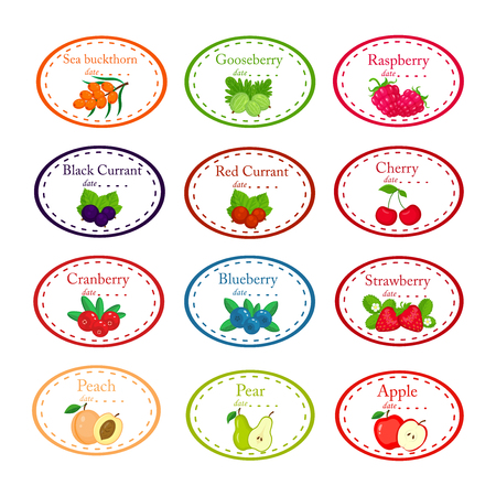 Big set of different labels for jam and conserves with garden fruits and berries illustration isolated on white background. Ilustração