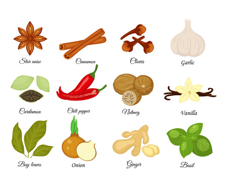 Set of different spices.