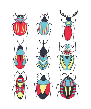 Cute vector set of different doodle  bugs and beetles. Vector design insect collection isolated on white.