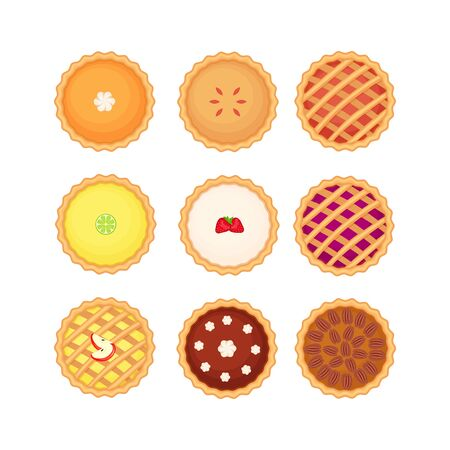 Set of different homemade pies. Pumpkin, apple, fruit, chockolate and pecan pies. Flat style elevated view. Vector illustration isolated on white background.