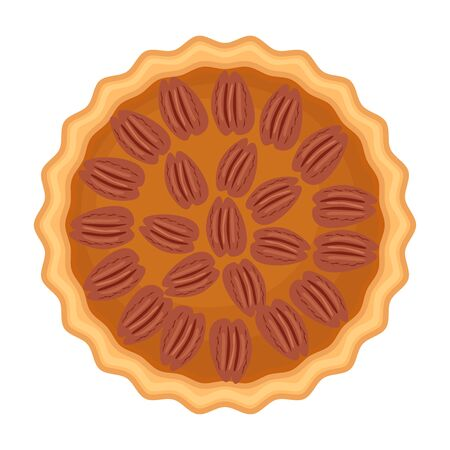 Traditional American homemade pecan pie with pecan nuts. Vector illustration isolated on white background. Elevated view. Ilustracja