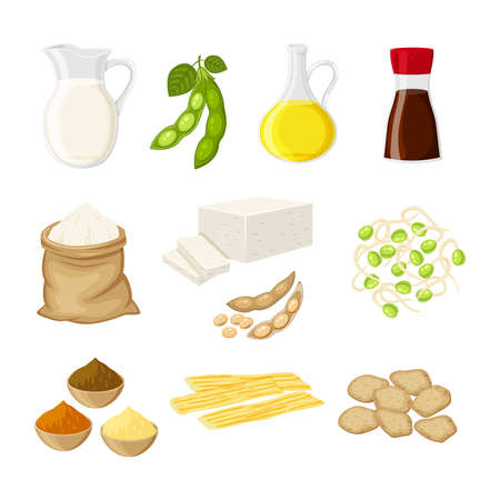 Set of different soy product in a flat cartoon style milk, oil, soy sauce, flour, tofu, miso, meat, tofu skin, sprouts vector illustration isolated on white background.