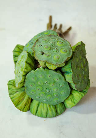 seedpod: lotus seed on wood