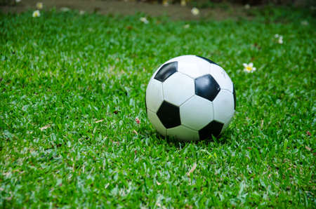 black and white football on grass Stock Photo