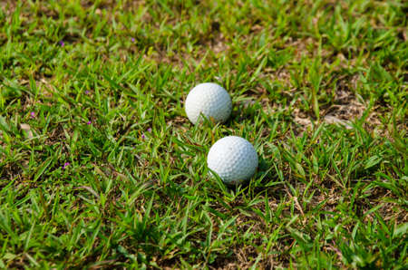 old golf ball on green for play Stock Photo