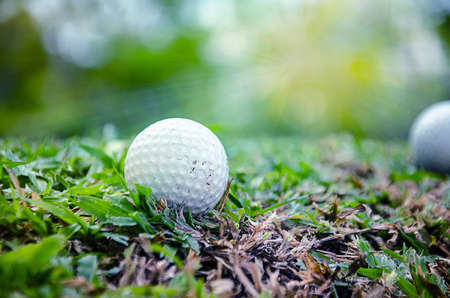 white golf ball on   grass with ray light Stock Photo