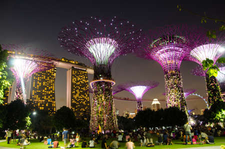 marina bay sand: Singapore ,April 3 -2016 unidentified   tourist watching Super tree at Garden by the bay and Marina bay Sand    Singapore  April, 3 , 2016