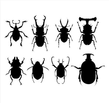 insecto logo de escarabajo set vector con colección de insectos negros