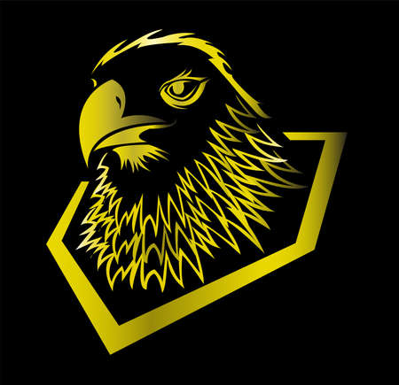 bird animal vector of eagle logo and falcon head with hawk design of creative mascot