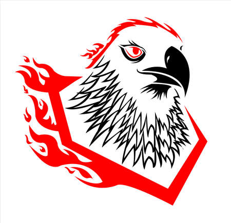 bird animal vector of eagle logo and falcon head with fire and flame on hawk design of creative mascot Vettoriali