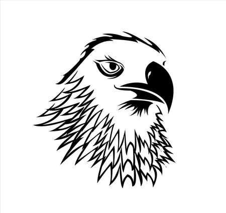 bird animal vector of eagle logo and falcon head with hawk design of creative mascot Archivio Fotografico - 122005480