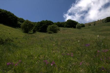 umbria: Umbria Mountain