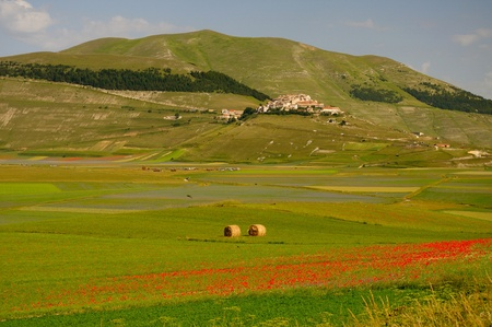 castelluccio di norcia: Castelluccio di Norcia in the summer Stock Photo