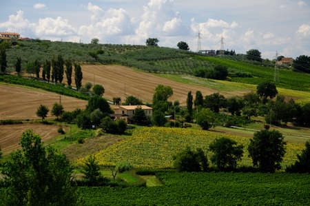 Umbria landscape in the summer