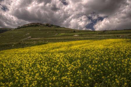 norcia: The summer in Castelluccio di Norcia