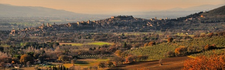 Panoramic view of Spello photo