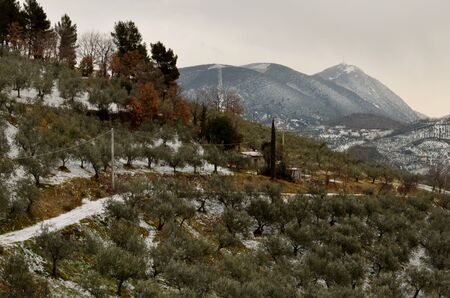 The umbria hills in winter photo