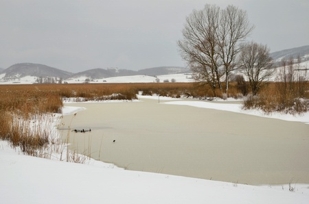 Frozen lake of Colfiorito in Winter photo
