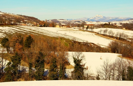 Picture of typical marche landscape Stock Photo - 12659566
