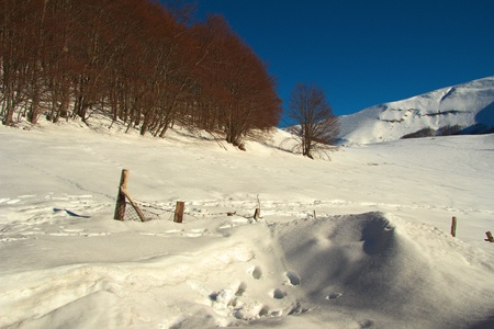 Winter landscape with the snow in Italy photo
