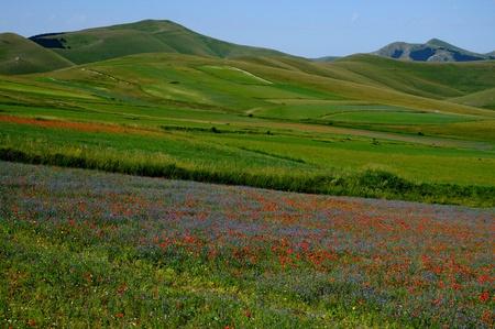 Mountains in the Sibillini Park Zdjęcie Seryjne