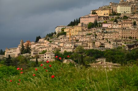 A view of Trevi with any poppies
