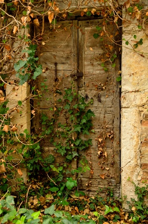 Old door of abandoned house