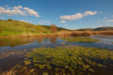 appennino: The lake in the spring Stock Photo