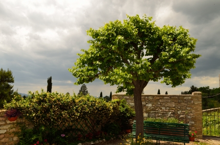 spello: The garden in Spello city