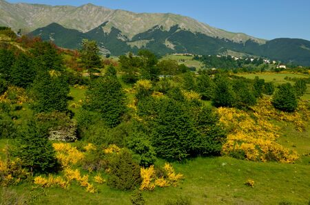 appennino: Abruzzo appennino in the spring Stock Photo