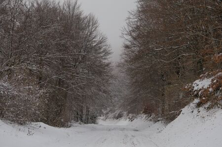 Road of the umbria mountain with snow Stock Photo - 16793641