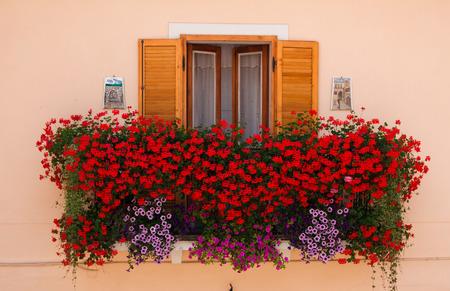 Photo of window with fresh flowers. photo
