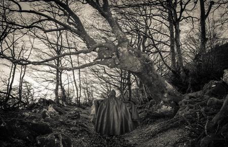 dark woods: Obscure presence in the dark woods