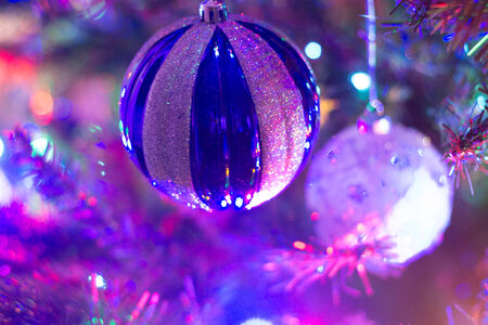 seeting: Home with lighted christmas tree