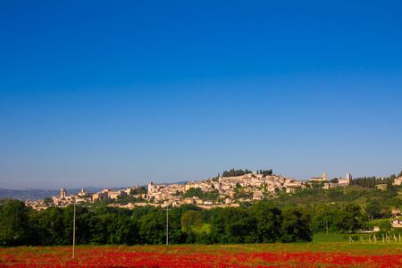 spello: Panoramic view of Spello from poppies field Stock Photo