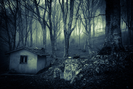 Image of ghost house in the misty forest Zdjęcie Seryjne