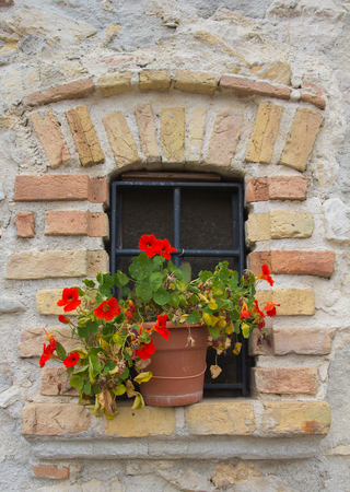 Window decorated with vase of flowers Stock Photo