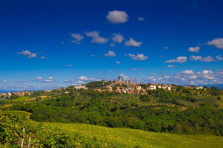 wineyard: San Gimignano, Tuscany region, Italy. Wineyard in front of the ancient medieval walls Stock Photo