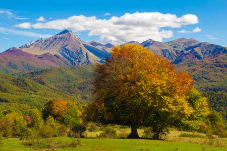 monti: Beautiful autumn landscape in the Monti della Laga park, Abruzzo