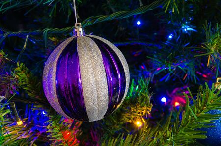 golden ball: Ball shape Christmas decoration in real tree Stock Photo