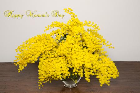 wallpaper International Women s Day: Vase của keo phấn trắng mimosa. Chúc mừng ngày Phụ Nữ.