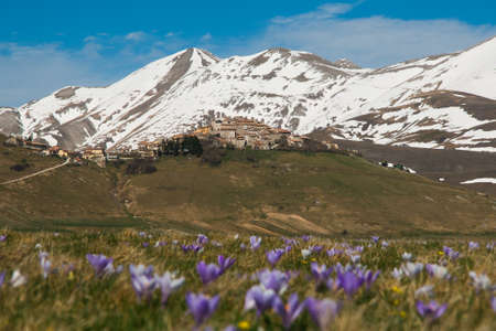 castelluccio di norcia: Castelluccio di Norcia in the spring season with flowers Stock Photo