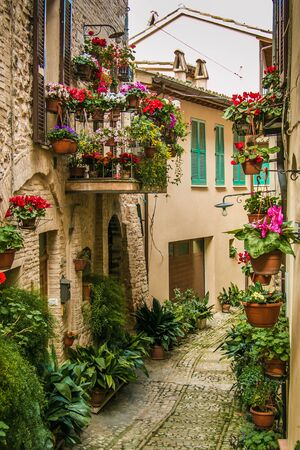 spello: Spello alley with flowers