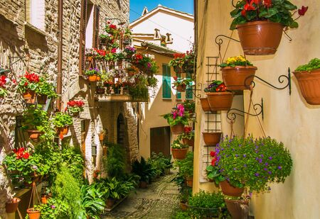 spello: Charming street decoration with plants and flowers in medieval town Spello (Umbria, Italy)