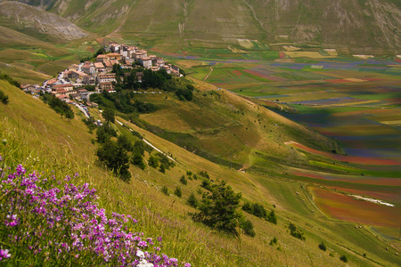 castelluccio di norcia: Idyllic mountain village on wild flowers. Panoramic view of Castelluccio di Norcia in Umbria. Stock Photo