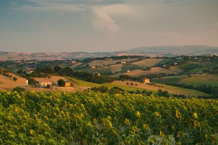 marche: Rural marche landscape in Italy Stock Photo